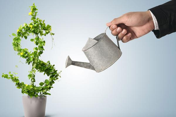Financial Advice in Cyprus